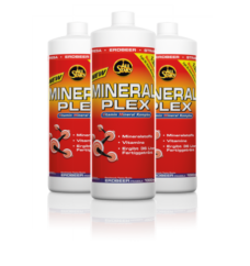 mineral_plex_gruppe